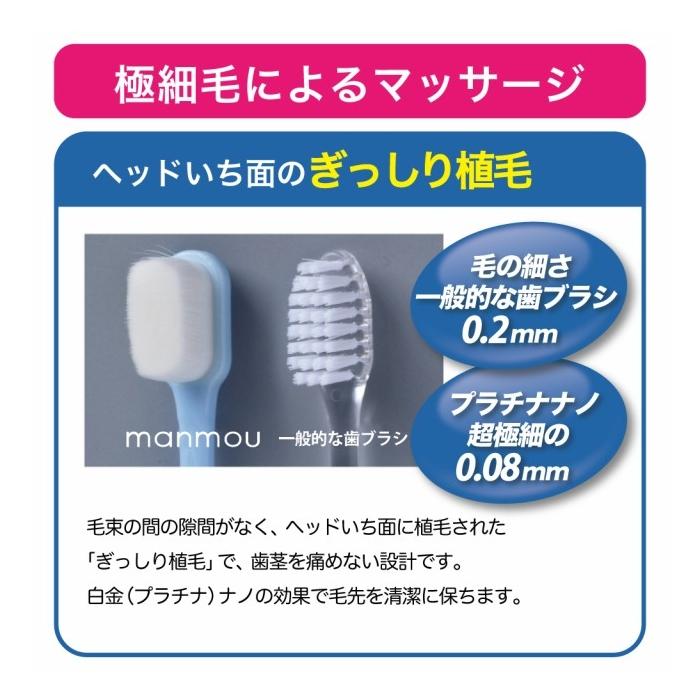 Bàn chải đánh răng phụ Nano Bạch Kim kháng khuẩn PT Nano Manmou Japan