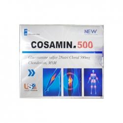 Tpbvsk xương khớp Vinaphar Cosamin 500mg, Hộp 100 viên