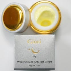 Kem làm giảm nám Giori Night Cream 15g