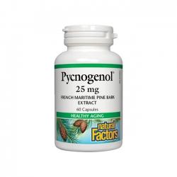 PYCNOGENOL hỗ trợ chống oxy hóa, hỗ trợ chống lão hóa
