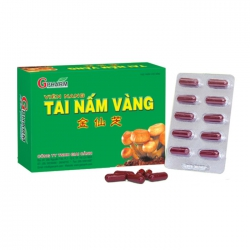 Tpbvsk Gpharm Tai nấm vàng, Hộp 60 viên