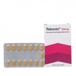 Thuốc Tebonin 120mg, Hộp 30 viên