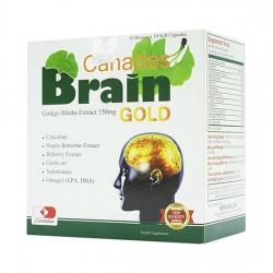 Tpbvsk bổ não Canadas Brain Gold