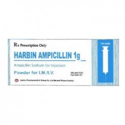 Thuốc bột pha tiêm Harbin Ampicillin 1g, Hộp 10 lọ