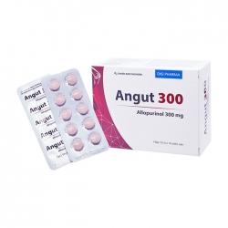 Thuốc DHG Angut 300 Allopurinol 300mg, Hộp 100 viên