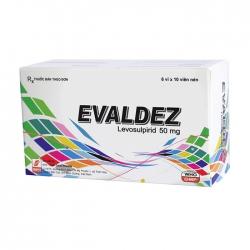 Thuốc hỗ trợ tiêu hóa Evaldez 50 mg | Hộp 6 vỉ x 10 viên