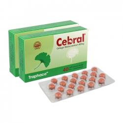 Thuốc hướng thần CEBRAL chiết xuất Ginkgo biloba
