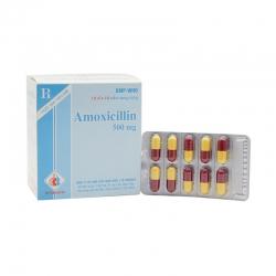 Thuốc kháng sinh Amoxicillin 500, Hộp 10 vỉ x 10 viên