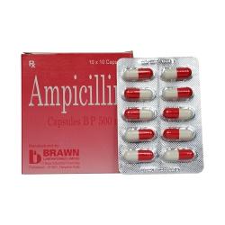 Thuốc kháng sinh AMPICILLIN 500mg - Brawn India