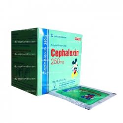 Thuốc kháng sinh Cophavina Cephalexin 250mg, Hộp 24 gói