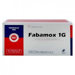 Thuốc kháng sinh Fabamox 1gr, Hộp 100 viên