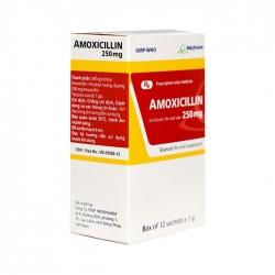 Thuốc kháng sinh Imexpharm Amoxycilin 250mg, Hộp 12 gói