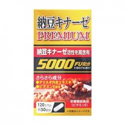 Viên uống phòng chống đột quỵ Nattokinase Premium 500FU120 viên