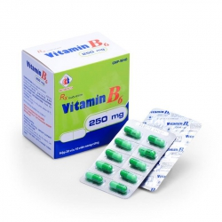 Vitamin B6 250mg Domesco (Hộp)